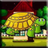 G2J Small Turtle Escape