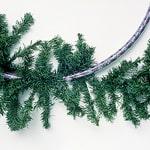 Hula-Hoop Wreath - Step 1