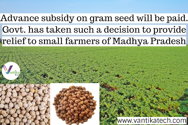 Gram seed subsidy