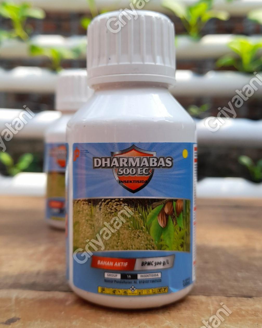 Dharmabas
