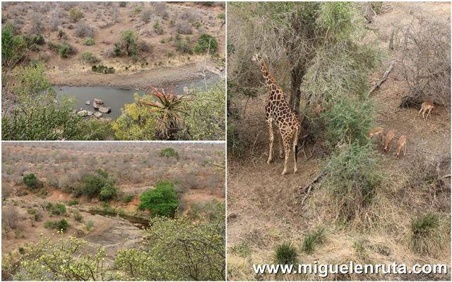 Mirador-Satara-Kruger