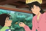 Detective Conan episode 992 subtitle indonesia