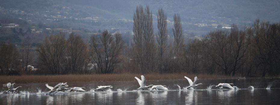 Δράσεις με αφορμή τον «13ο Γύρο Λίμνης Ιωαννίνων»  στο Μουσείο Αργυροτεχνίας