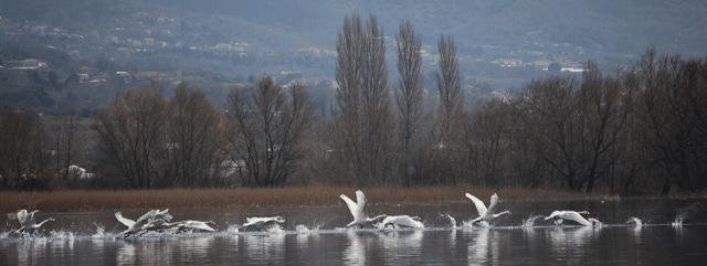 Γιάννενα: Δράσεις Με Αφορμή Τον «13ο Γύρο Λίμνης Ιωαννίνων» Στο Μουσείο Αργυροτεχνίας