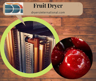 Fruit dryer