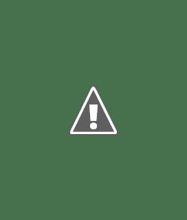 Dibujo que representa la educación online