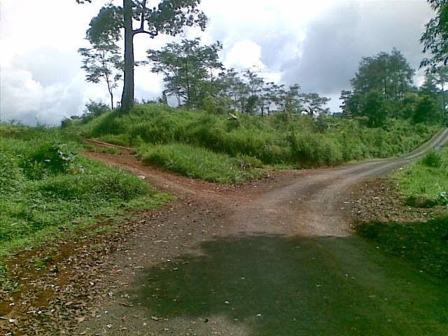 Foto(5375) Jual Tanah Murah Luas 130 Ha, Harga 50.000 Di Puncak Jual tanah di cipanas jual tanah di puncak