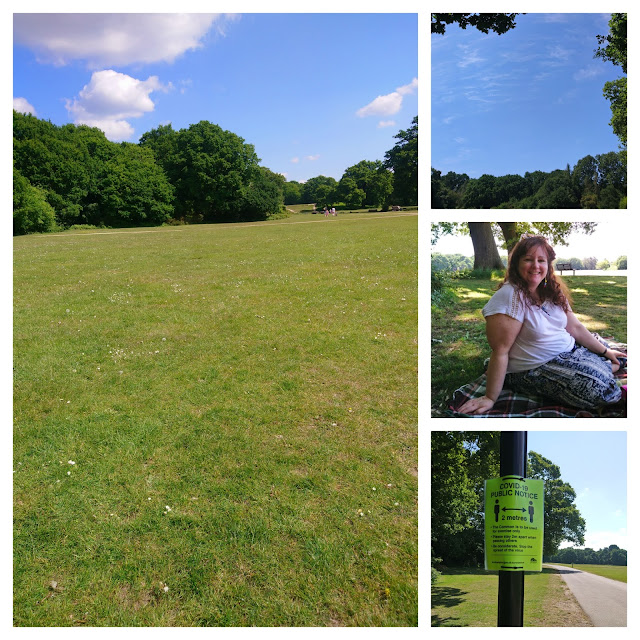 Picnics on Southampton Common