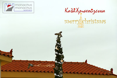Monachus Monachus Apartments - Merry Christmas 2016