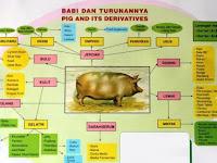 Waspada, Inilah Istilah Lain Babi atau Bahan Makanan dari Babi yang Wajib Diketahui