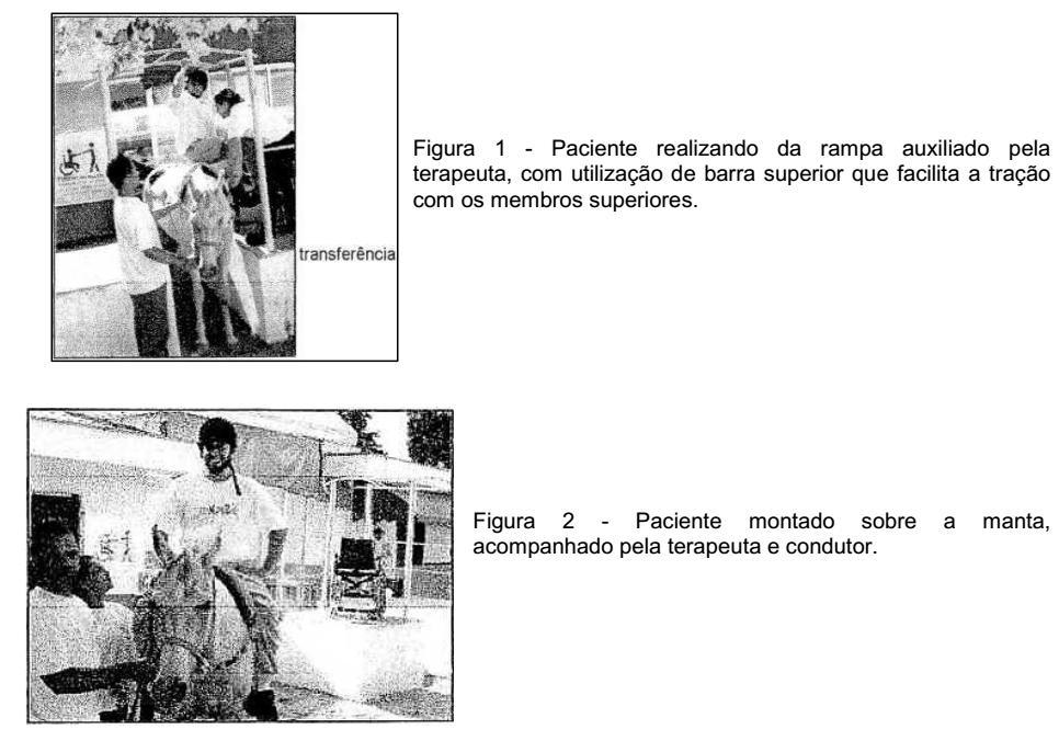 Luiz botelho mdico fisiatra dentro da equoterapia possumos segundo a ande brasil quatro programas sendo estes hipoterapia educao e reeducao equestre pr esportivo e esportivo fandeluxe Image collections