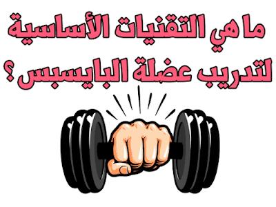 ما هي التقنيات الأساسية لتدريب عضلة البايسبس ؟