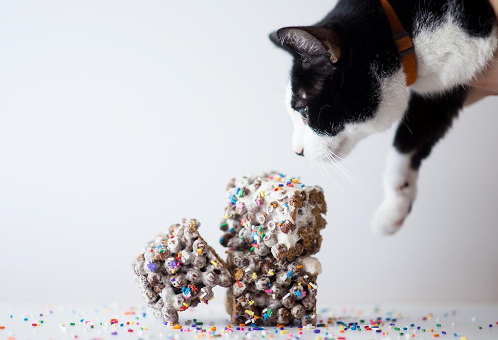 Cocoa Puffs Krispie Treats - littleladylittlecity.com