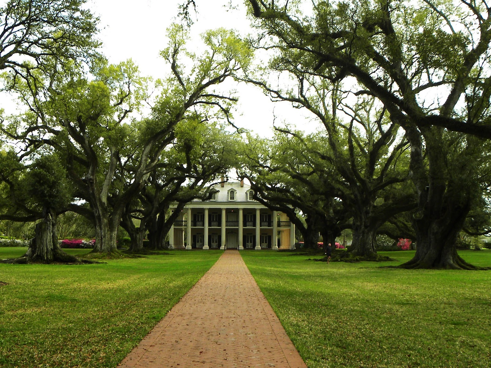 2015 TRAVELS : OAK ALLEY PLANTATION ON THE GREAT RIVER ...