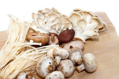 Mushroom farm training