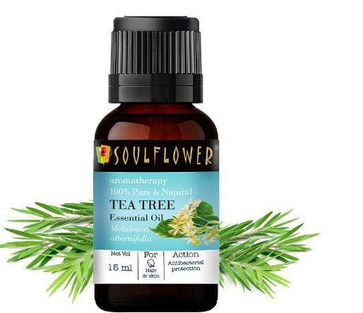 Soulflower Tea Tree Essential Oil, 15ml