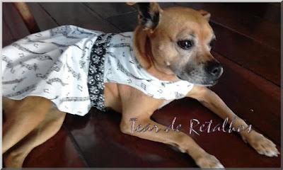 Cãozinho vestido com uma roupa PET para cachorro exclusiva. Dupla face, este lado tem um desenho com motivos musicais