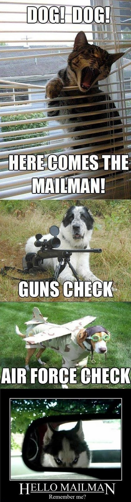 Haha! Here Comes The Mailman! Hello Mailman Remember me?