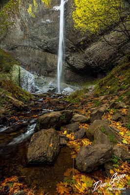 Latourell Falls amidst fall colors in the Columbia River Gorge National Scenic Area, Oregon, USA.
