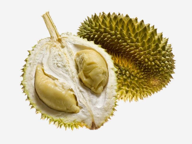 Gambar Buah Durian | Gambar Gambar Buah