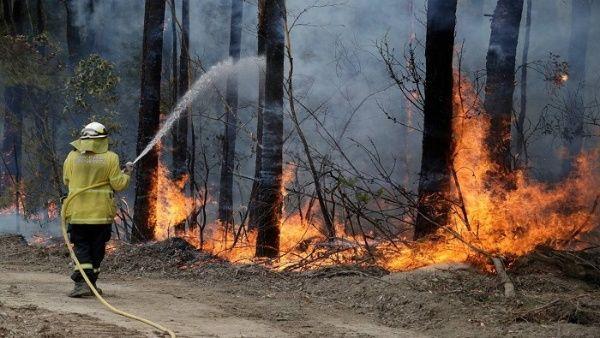 Más de 600.000 hectáreas arrasadas por megaincendio en Australia