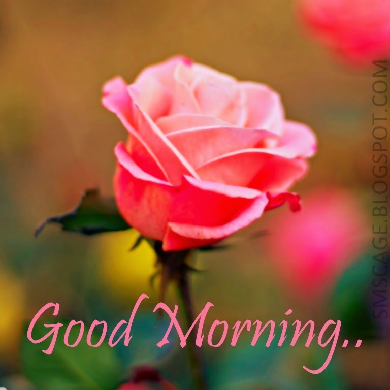 Romantic Good Morning SMS In Hindi Good Morning Romantic SMS In Hindi : 140  W..