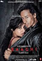 Baaghi as Sia