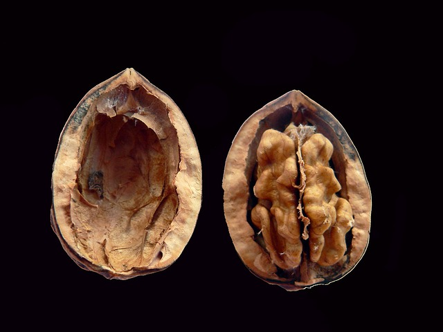 Two Brains in a Shell - Walnuts - 12 Health Benefits   5 Harmful Side-effects   Nutritional Value   Eat Dry or Soaked?