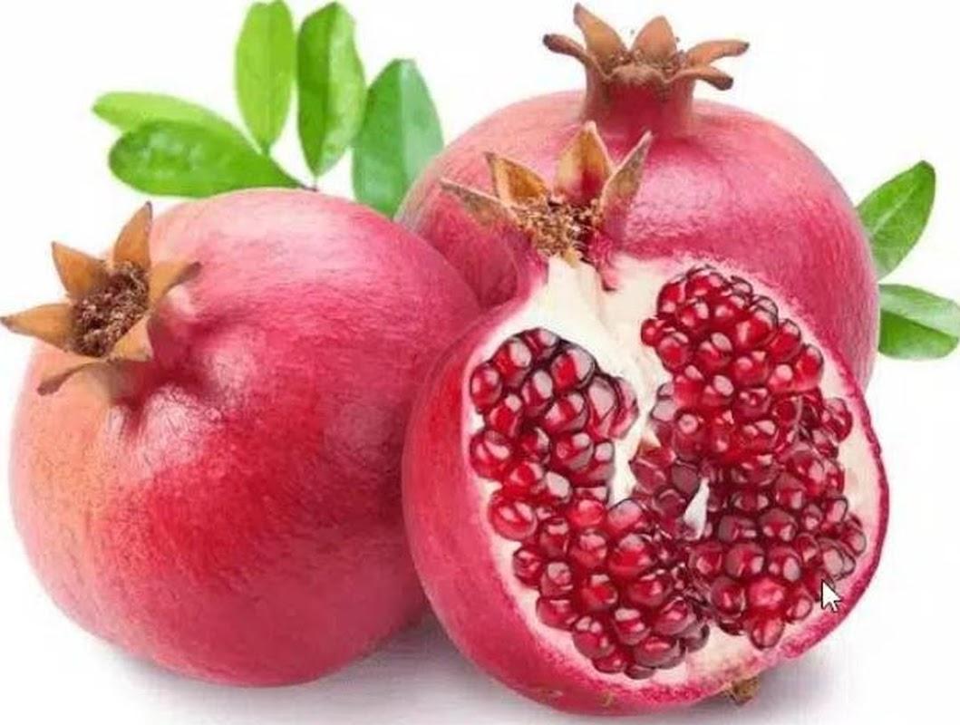 Bibit buah delima merah Banten