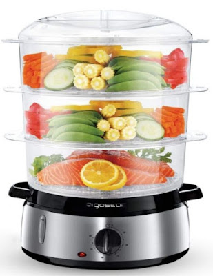 Best Electric Food Steamer