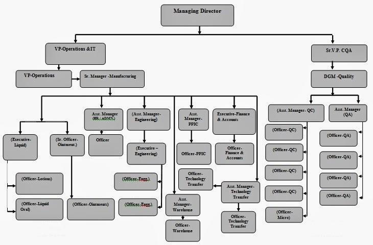 Organization Chat