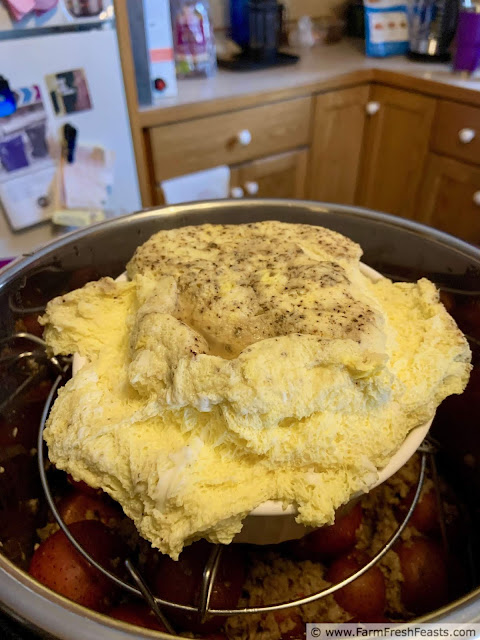 image of Instant Pot scrambled eggs exploded out of the confines of the oven safe dish