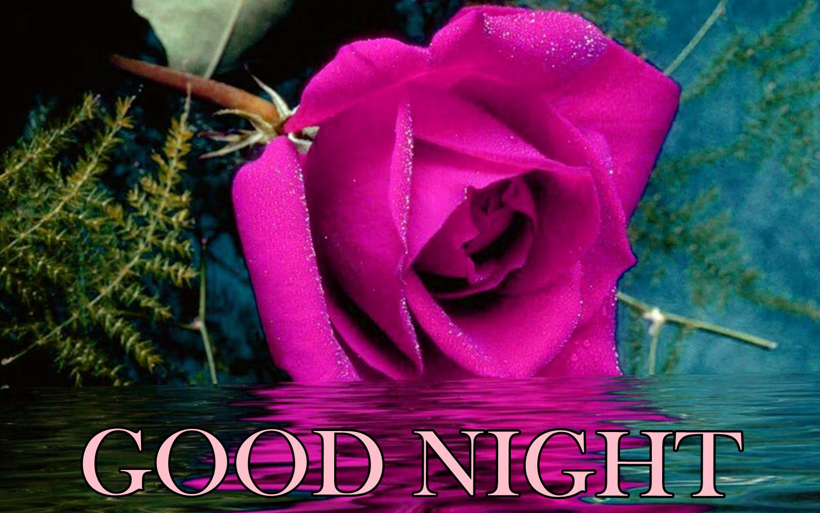 Good Night Flowers Pictures and Graphics
