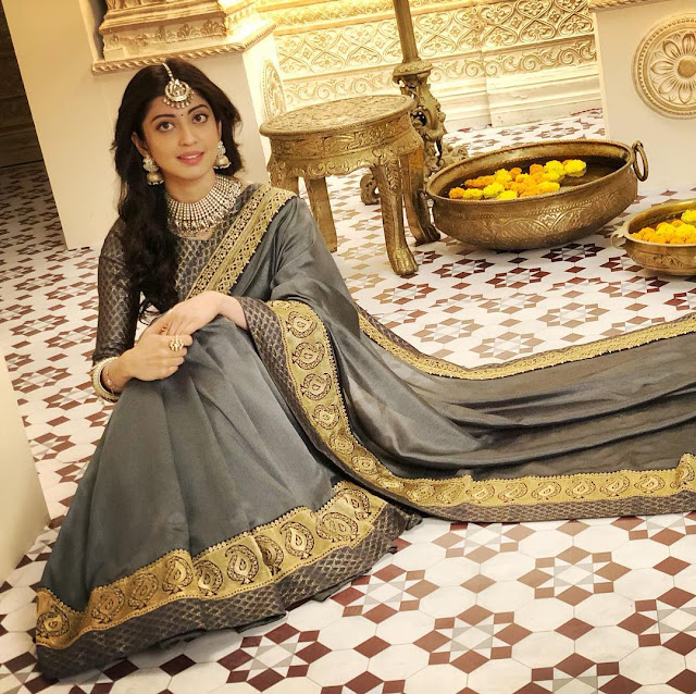 Pranitha Subhash (Indian Actress) Biography, Wiki, Age, Height, Career, Family, Awards, and Many More