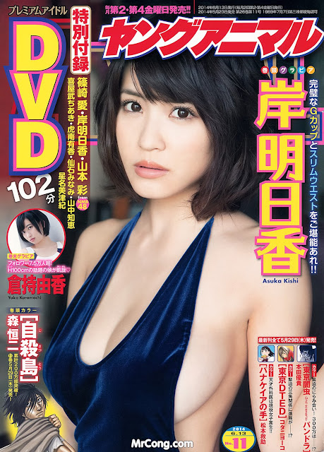Hot girls Japan porn magazine cover 2014 collection 9