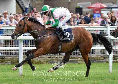 Mrs Fitri Hay Racing at Windsor