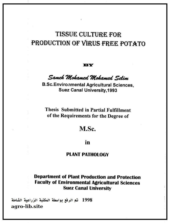 رسالة جامعية : إستخدام تقنية زراعة الأنسجة لإنتاج نباتات بطاطس خالية من الفيروسات