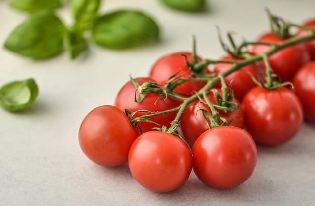 Tomat sangat baik dikonsumsi oleh ibu hamil. Kandungan likopen pada tomat ternyata membantu pembentukan sel otak janin