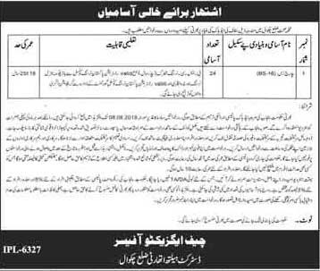 Jobs in DHQ Hospital in Chakwal 13 July 2019