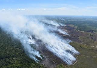 SSP reforça equipes de combate a incêndio em Arraial d'Ajuda
