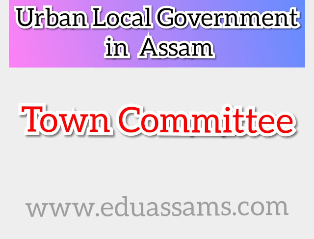 Town Committee, How many towns are there in Assam?, How many town committee are there in Karbi Anglong?, Which is the richest district in Assam?, Which is the smallest city in Assam? top 10 largest city of assam, assam city list, most developed city in assam, total sub division of assam 2018, towns of assam by population,
