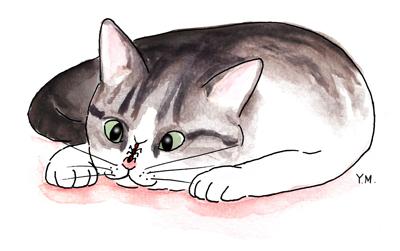 Cat and an ant by Yukié Matsushita