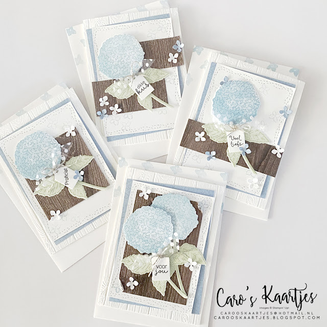 Kaartenset - set of cards - Hydrangea Heaven - Hemelse Hortensia - Stampin' Up! - Caro's Kaartjes