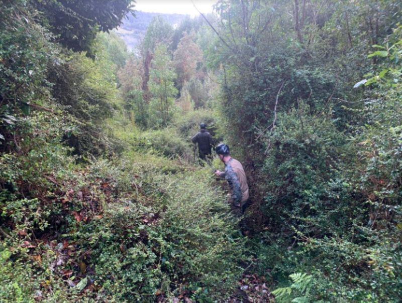 Militares osorninos se unen a búsqueda de adulto mayor en Quellón