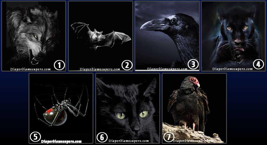 Test: Elige un animal para revelar el lado oscuro oculto de tu personalidad
