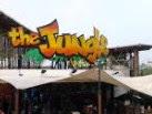 Rute Menuju The Jungle Bogor