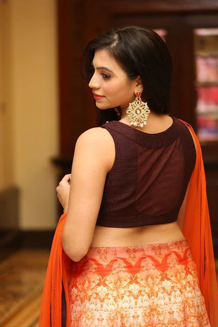 Priyanka Latest Hot Cleveage Spicy Glamourous PhotoShoot Images At Aparatment Movie Audio Launch