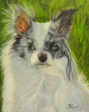 """Sport,"" a Chion pet portrait in oils"