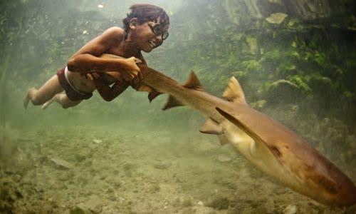 Người Bajau ở Indonesia lặn tự do ở độ sâu đến 70 m