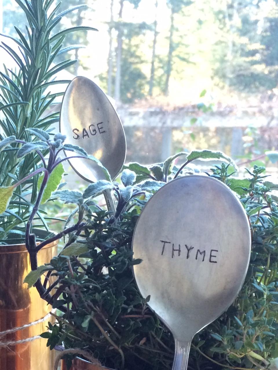 Little Farmstead Diy Christmas Gift Windowsill Herb